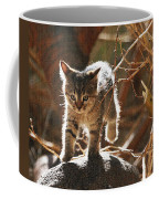 Wild Kitten Happy To Be Alive Coffee Mug