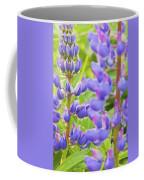 Wild Lupine Flowers Coffee Mug