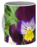 Wild Pansies Or Johnny Jump-ups 1 Coffee Mug