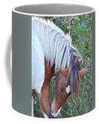 Wild Ponies Of Assateague 21 Coffee Mug