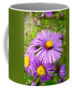 Wild Purple Asters Coffee Mug
