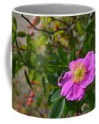 Wild Rose 3 Coffee Mug