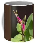 Wild Rose Buds Coffee Mug