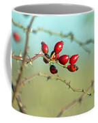 Wild Rose Hips Coffee Mug