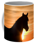 Wild Stallion At Sunrise Coffee Mug