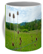 Wild Teasel In Nez Perce National Historical Park-id- Coffee Mug