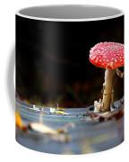 Wild Toadstool Coffee Mug