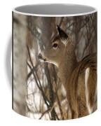 Wild White-tailed Deer Coffee Mug