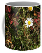 Wildflower @ Kit Carson Coffee Mug