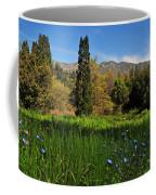 Wildflower Meadow At Descanso Gardens Coffee Mug
