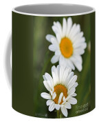 Wildflower Named Oxeye Daisy Coffee Mug