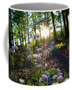 Wildflower Sunset Coffee Mug