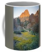 1b6430 Wildflowers In Pinnacles National Park Coffee Mug