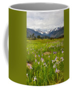 Wildflowers In Rocky Mountain National Park Coffee Mug