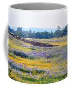Wildflowers On Table Mountain Coffee Mug