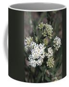 Wildflowers - White Yarrow Coffee Mug