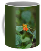 Wildly Orange Coffee Mug