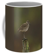Willet On A Post Coffee Mug