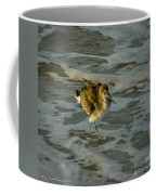 Willet Washing 1 Coffee Mug