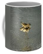 Willet Washing 6 Coffee Mug
