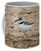 Wilsons Plover At Nest Coffee Mug