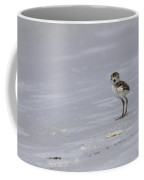 Wilson's Plover Chick Photo Coffee Mug