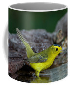 Wilsons Warbler Wilsonia Pusilla Coffee Mug