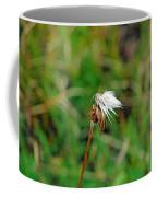 Winded White Coffee Mug