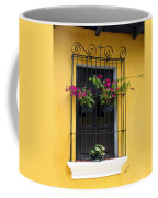 Window At Old Antigua Coffee Mug