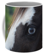 Window To The Soul Coffee Mug