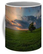 Windows Sd Coffee Mug