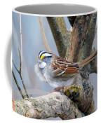 Windy Perch Coffee Mug