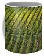 Wine Acreage In Germany Coffee Mug