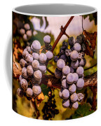 Wine Grapes On The Vine Coffee Mug