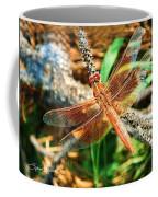 Winged Wonder Coffee Mug
