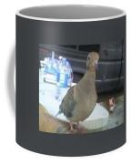 Wings Of Doves Coffee Mug