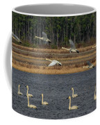 Wings Over Water 2 Coffee Mug