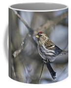 Winter Beauty.. Coffee Mug