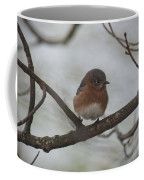 Winter Blue Bird 1 Coffee Mug