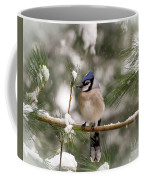 Winter Blue Jay Coffee Mug