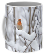 Winter Color Coffee Mug