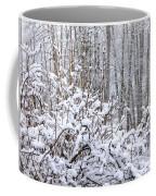 Winter Haven 2 Coffee Mug
