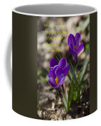 Winter Is Over - Spring Has Arrived Coffee Mug
