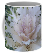 Winter Kale  Coffee Mug