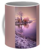 Winter Light Reflected Coffee Mug