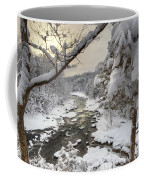 Winter Morning Coffee Mug by Bill Wakeley