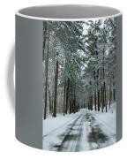 Winter On Mohegan Park Road Coffee Mug