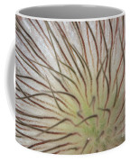 Winter Pasque Flower Coffee Mug