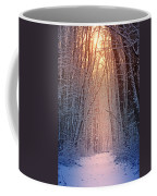 Winter Pathway Coffee Mug