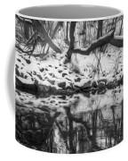 Winter Reflection Coffee Mug
